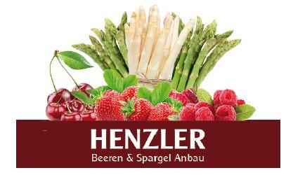Sponsor Turnschule NeckarGym Henzler Beeren